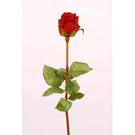 Fleur Rose fuchsia