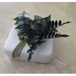 Cadre végétal stabilisé, Céramique blanc