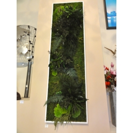 Cadre végétal stabilisé rectangle