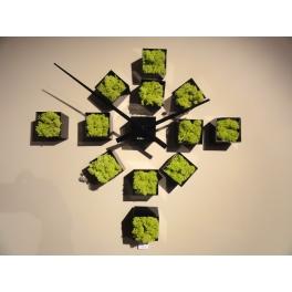 Horloge DIY Lichen